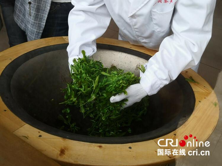 【民族要复兴 乡村必振兴】贵州清镇:以茶产业助力乡村振兴_fororder_3