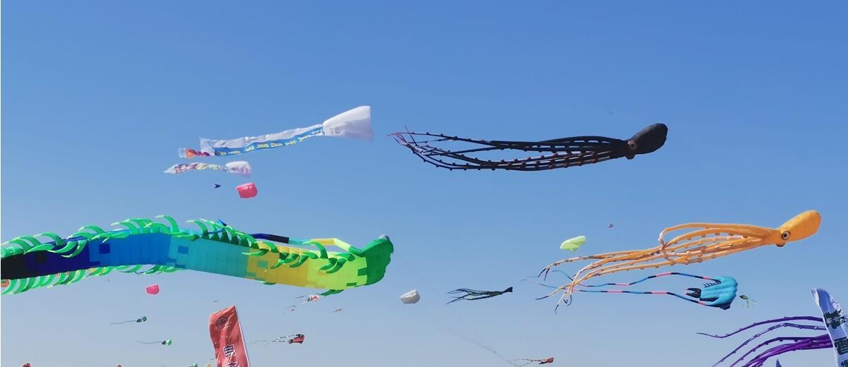 春风十里 彩鸢飞舞 相约第38届潍坊国际风筝会